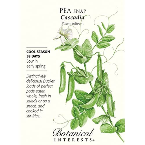 Cascadia Snap Pea Seeds - 25 grams - Botanical Interests hot sale
