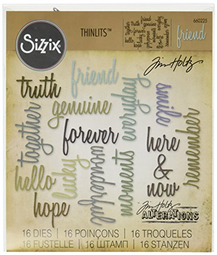 Sizzix 660225 Thinlits Die Set, Friendship Words: Script by Tim Holtz (16 Pack) by Sizzix