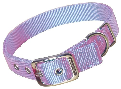 Hamilton Double Thick Nylon Deluxe Dog Collar, 1-Inch by 28-Inch, Lavender