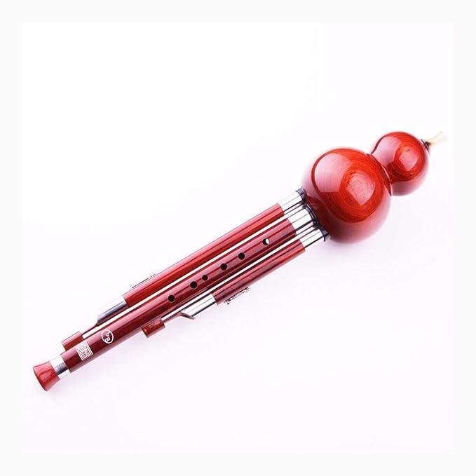 Hulusi Profesional de Las cucurbitáceas Instrumento C, B Flat, D ...