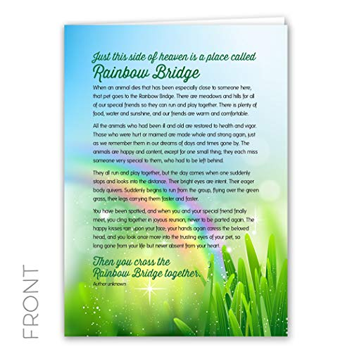 Rainbow Dogs Bridge - Rainbow Bridge Keepsake Pet Sympathy Card for Dog, Cat, Horse or Any Pet Loss, 5