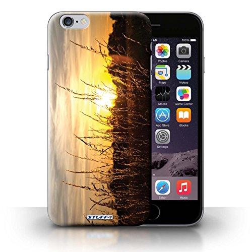 Hülle Case für iPhone 6+/Plus 5.5 / Gerstenfelder Entwurf / Sonnenuntergang Collection