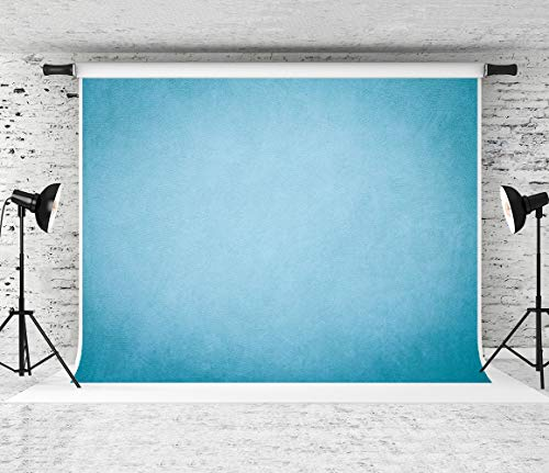 (Kate 10x10ft Blue Backdrop Portrait Backdrops Muslin Background Old Master Photo Backdrop)