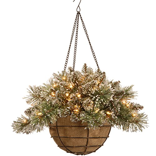 Bristle Pine Hanging Basket with Pine Cones