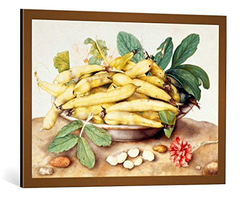 kunst für alle Framed Art Print: Giovanna Garzoni Bowl with podsoten Beans and Cloves - Decorative Fine Art Poster, Picture with Frame, 33.5x23.6 inch / 85x60 cm, Copper Brushed ()