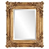 Howard Elliott Edwin Rectangular Mirror, 19 x 23-Inch, Rustic Antique Gold