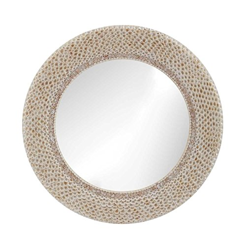 Lazy Susan Ribbed Ring Shell Mirror