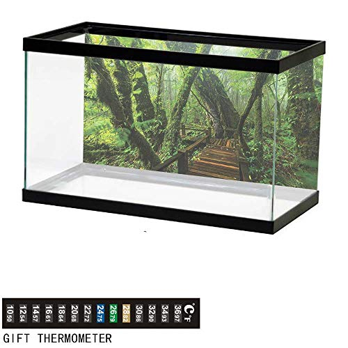 bybyhome Fish Tank Backdrop Forest,Entrance to Wilderness,Aquarium Background,24