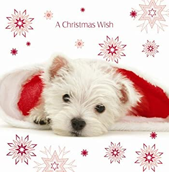 Santa's Helper Westie Luxury Christmas Cards Pack: Amazon.co.uk ...