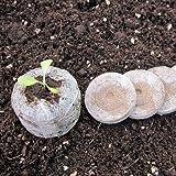 Torfquelltöpfe - Quelltöpfe - Jiffy-7 - 100 Stück von Native Plants