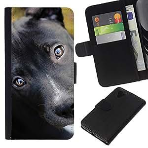 eJoy---La carpeta del tirón la caja de cuero de alta calidad de la PU Caso protector - LG Nexus 5 D820 D821 - --Pit Bull Terrier Puppy Black Eyes Dog