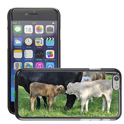 "Bild Hart Handy Schwarz Schutz Case Cover Schale Etui // M00135059 Beef Jungtier Tierhaltung Rinder // Apple iPhone 6 PLUS 5.5"""