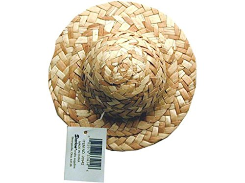 Darice Party Supplies Straw Hat Round Crown 5