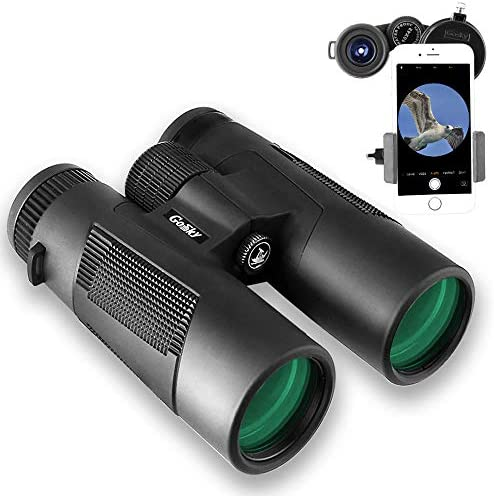 Gosky Blackbird Roof Prism 8×42 Binoculars, Waterproof Frogproof Binocular for Adults for Bird Watching Travel Stargazing Hunting Concerts Sports-BAK4 Prism FMC Lens