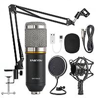 Paquete de micrófono de condensador ZINGYOU, kit de micrófono BM-800 con brazo de tijera con suspensión de micrófono ajustable, montaje de choque y filtro pop de doble capa para grabación en estudio y brocasting (paquete de micrófono BM-800)