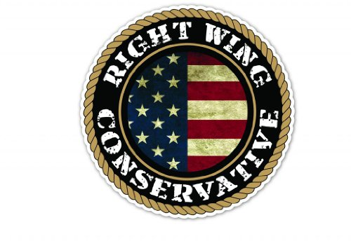 Right Wing Conservative Patriotic USA Flag Vinyl Decal Bumper Sticker 5 Inches X 5 Inches (Stickers Wing Right Bumper)