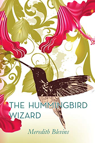 The Hummingbird Wizard (The Mystic Cafe Trilogy Book 1)