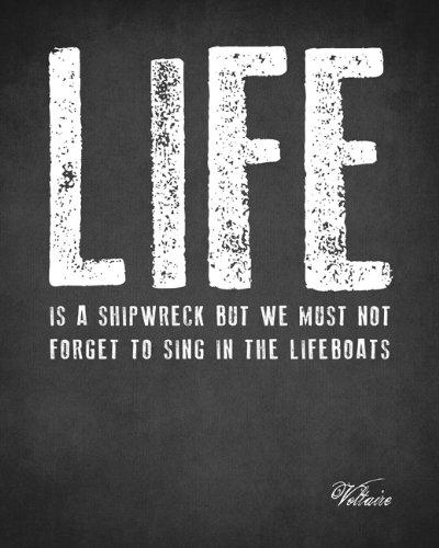 Amazon Life Is A Shipwreck Voltaire Quote Premium Art Print Magnificent Life Quote Poster