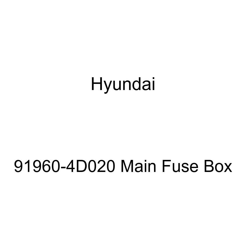 Genuine Hyundai 91960-4D020 Main Fuse Box