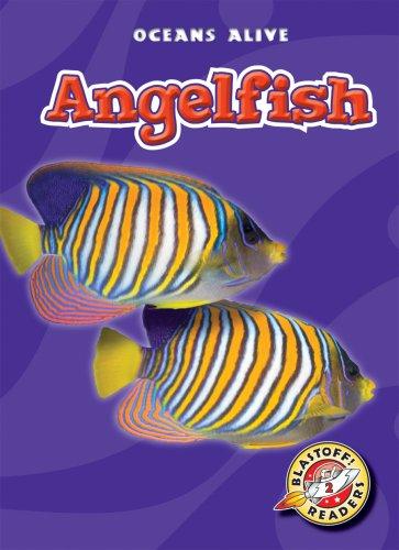 Angelfish (Blastoff! Readers: Oceans Alive) (Blastoff Readers. Level 2) by Bellwether Media