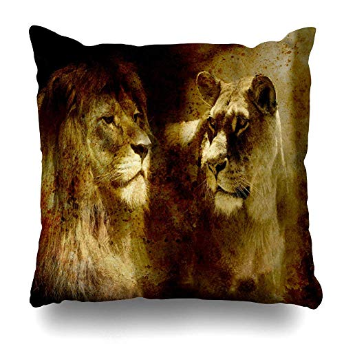 Looking Lion Couple Lioness Mystic On Abstract Wildlife Decorative Square Throw Pillow Case Cover Cushion Cover Pillowcase Cushion Case for Sofa Bed Chair Seat 18x18 Inch