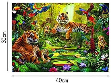 Broderie Diamant Tigre 40 * 30cm Strass /à Broder au Point de Croix Doitsa 1pcs DIY 5d Diamant Peinture par Num/éro Kit