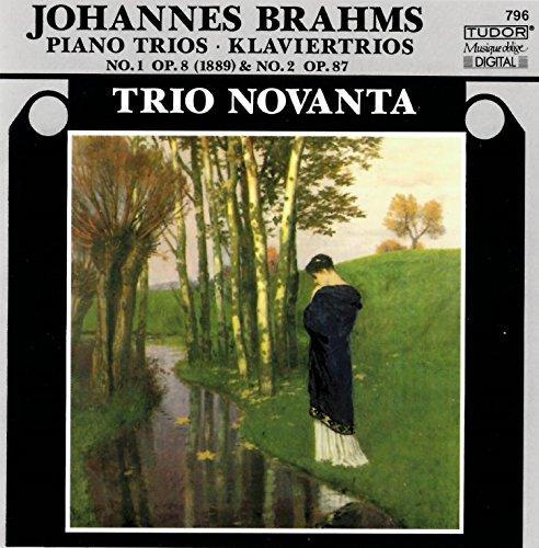Piano Trio No. 1 in B Major, Op. 8 (1889 Version): I. Allegro con brio 5 Piano Trios