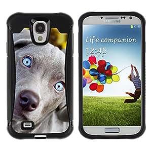 Suave TPU Caso Carcasa de Caucho Funda para Samsung Galaxy S4 I9500 / Blue Weimaraner Vizsla Puppy Dog / STRONG