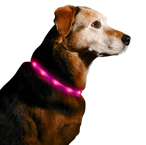 LED Dog Necklace Collar Rechargeable