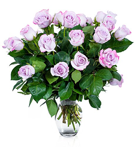 (FLWERZ [Touch of Elegance] Two Dozen Classic Aromatic Beautiful Blooming Purple Roses Gorgeous Long Stem Fresh-Cut Hand-Made Luxury Bouquet Arrangement of Rose Flowers w/Free clear 8 oz Vase)