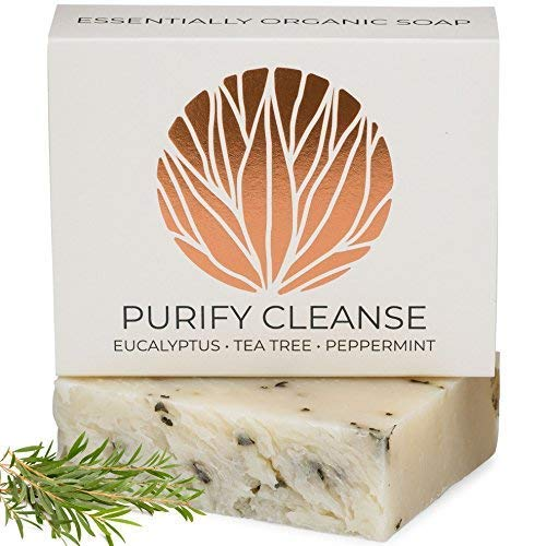 Organic Eucalyptus Tea Tree Hemp Soap Bar with Peppermint Leaves | Certified Organic Ingredients, Vegan, GMO Free | Face & Body Wash for Combination and Oily Skin, Acne, Eczema