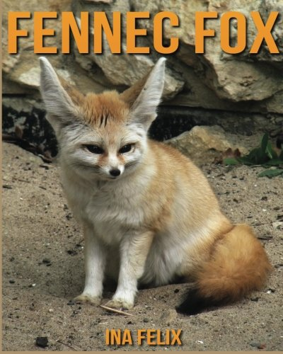 Fennec Fox  Children Book Of Fun Facts   Amazing Photos On Animals In Nature   A Wonderful Fennec Fox Book For Kids Aged 3 7