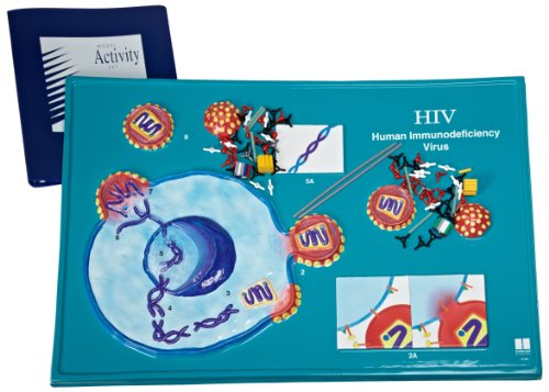 American Educational HIV Model Activity Set