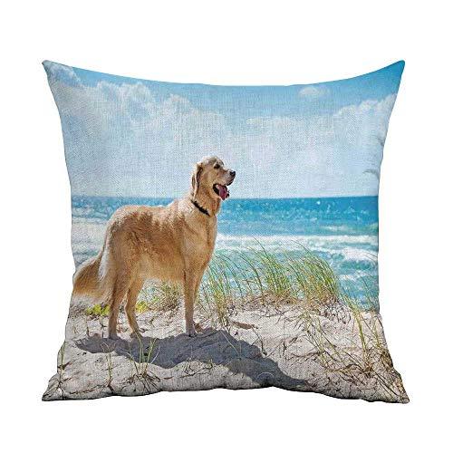 (warmfamily Living Room Sofa Hug Pillowcase Dog Lover Decor Golden Retriever on a Sandy Dune Overlooking Tropical Beach Ocean Outside Sky Soft and Durable W14 xL14)