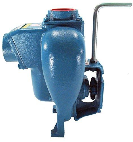 MP Pumps 36585 FLOMAX8 2