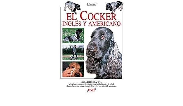 El Cocker inglés y americano eBook: Filippo Cattaneo: Amazon.es: Tienda Kindle