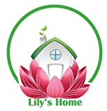 Lily's Home Hanging Wall Clock, Includes a