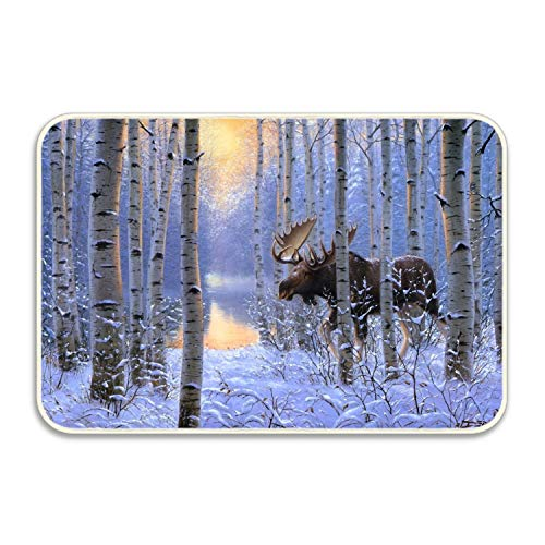 Beautiful Moose Doormat Indoor Outdoor Rug for Entrance, Door Floormat Shoe Scraper & Rubber (Beautiful Moose)