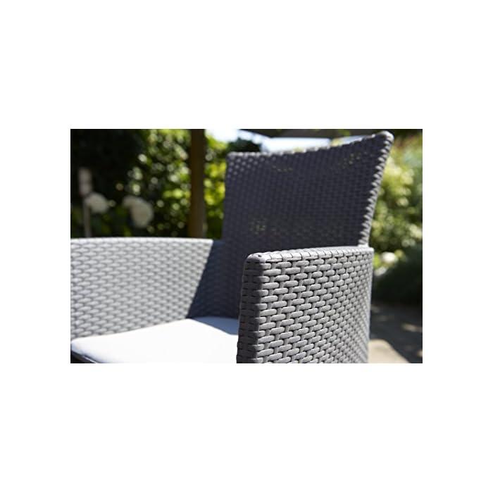 51%2BReypqwoL Incluye un cojín en el asiento y respaldo ergonómico. Sillón para interior y exterior, ideal para jardines, terrazas, porches y otros espacios de entretenimiento. Acabado de ratán plano plano, duradero, resistente al clima y a la corrosión.