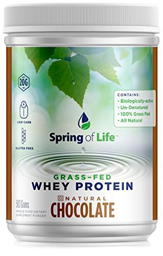 Spring of Life Grass-Fed Whey Protein, Natural 100% Grass Fed Whey Protein with NO GMOs or Hormones, Chocolate Flavor, 22 (Life Protein Powder Natural)
