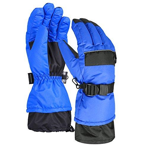 Terra Hiker Waterproof Microfiber Winter Ski Gloves 3M Thinsulate Insulation for Men (M, Blue)