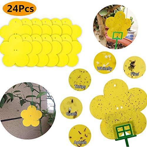 debieborahtoys Dual-Sided Yellow Sticky Traps