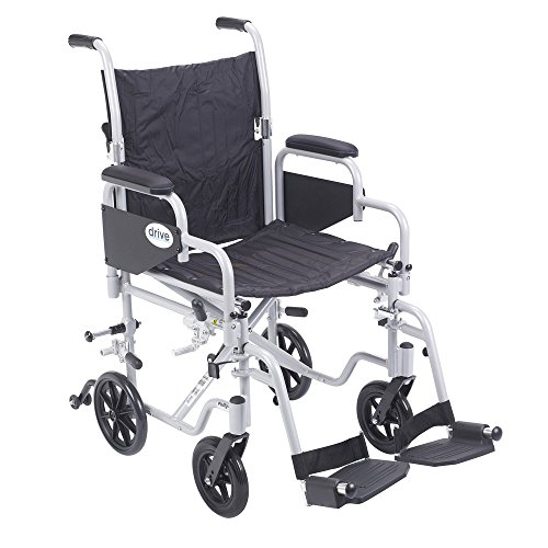 Pollywog Wheelchair/Transport Combination Chair -