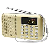 iMinker Mini Portable Digital AM/FM Radio Media Speaker MP3 Music Player Support TF Card/USB Port with LED Screen Display, Emergency Flashlight, 3.5mm Earphone Jack (Gold)