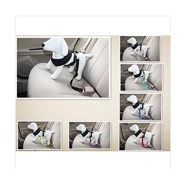 Wkae Pet Car Seat Belt Clip Lead Restraint Safety Harness Tracton ( Color : Black ) Click on image for further info. 5