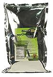 Glace Matcha Green Tea (3-lb pack)
