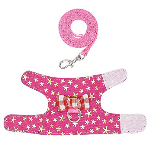 Pictures of Stock Show Small Pet Outdoor Walking Harness 7