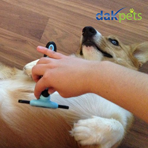 DakPets-Dog-Brush-Cat-Brush-For-Small-Medium-Large-Dogs-and-Cats-With-Short-to-Long-Hair-Dramatically-Reduces-Shedding-In-Minutes