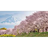 Best Fuji Acrylic Paints - Modern Decoration Poster Wallpaper Mount Fuji Cherry Blossoms Review
