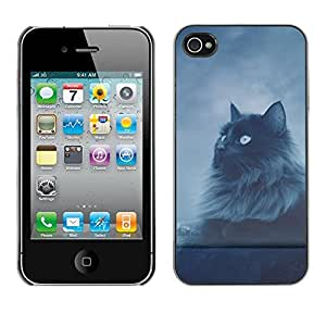 Impact Case Cover with Art Pattern Designs FOR iPhone 4 / 4S Cat Longhair Grey Black Blue Eyes Night Sky Betty shop